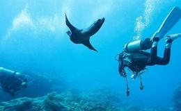 Scuba Dive at Las Caletas Puerto Vallarta Yachts1