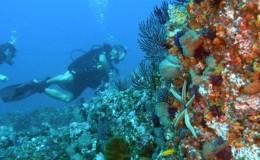 Scuba Dive at Las Marietas Puerto Vallarta Yachts1