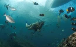 Scuba Dive at Las Marietas Puerto Vallarta Yachts5