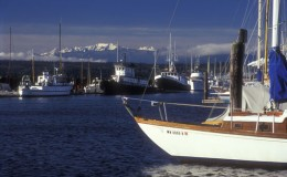 Port Townsend boats